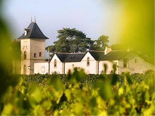 Château Soucherie : Bed and Breakfast near Saint-Aubin-de-Luigné