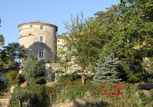 Chateau de Mauras : Bed and Breakfast near Coux