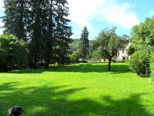 A la Grenouille du Jura : Bed and Breakfast near Bolozon