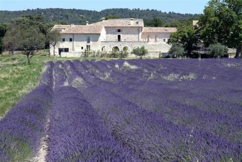 Les Domaines de Patras : Guest accommodation near Solérieux