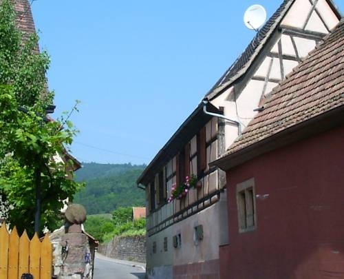 Gite Colmar : Guest accommodation near Niedermorschwihr