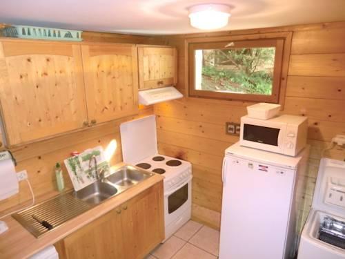 Chalet Le Mélèze : Guest accommodation near Saint-Christophe-en-Oisans