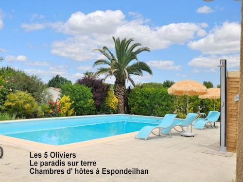 Les 5 Oliviers : Bed and Breakfast near Abeilhan