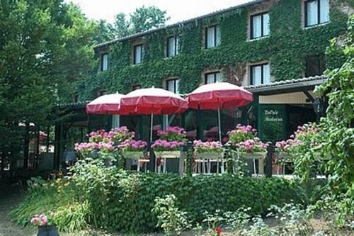 Logis Hotel Le Relais De Comodoliac : Hotel near Javerdat