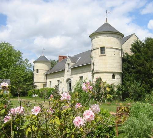 Le Manoir de Champfreau : Guest accommodation near Allonnes