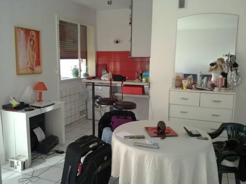 joinville le pont paris apartment near saint maur des foss s. Black Bedroom Furniture Sets. Home Design Ideas