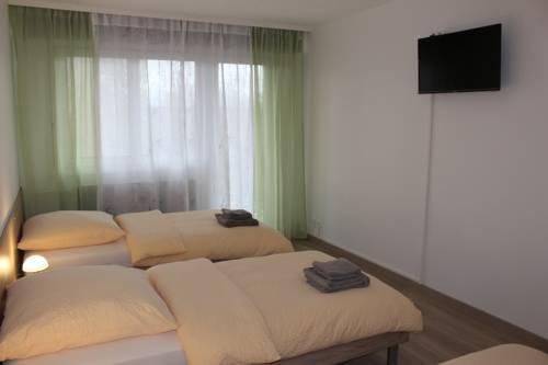 Studio near Basel Airport : Apartment near Rosenau
