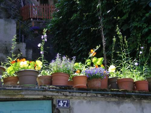 Le Liseron Bleu : Apartment near Vienne