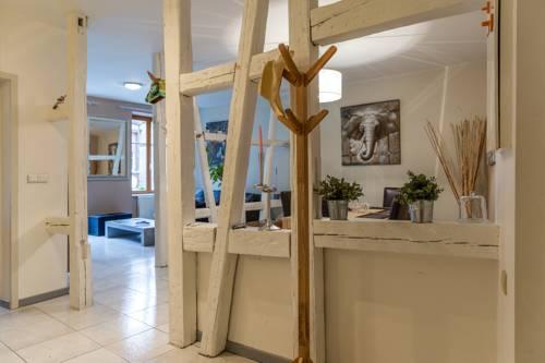 Gite hyper centre 10 pers + parking : Apartment near Colmar
