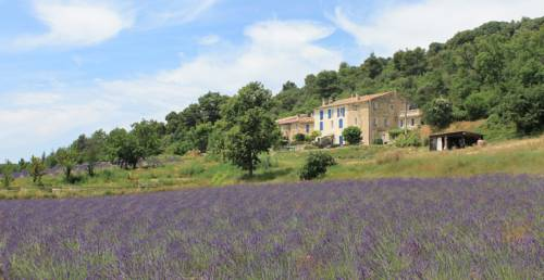 Domaine De Bertrandy : Bed and Breakfast near Valensole