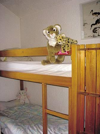 Chalet Séquoia : Guest accommodation near Vénosc