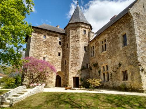 Château de Chanzé : Guest accommodation near Beaulieu-sur-Layon