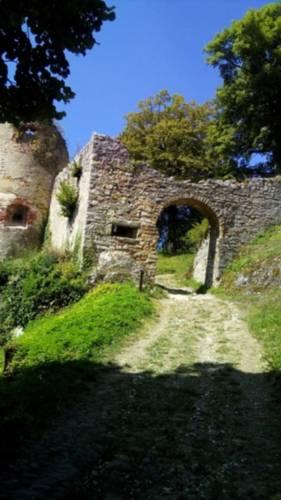 Le Roi du Sundgau : Guest accommodation near Kœstlach