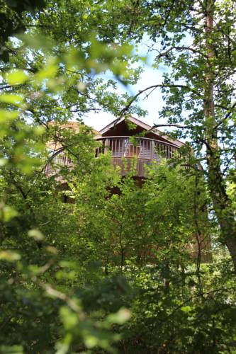 Cabane Rouge-Gorge : Guest accommodation near Auriac-du-Périgord