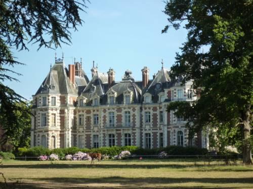 Château de la Jumellière : Bed and Breakfast near Saint-Aubin-de-Luigné