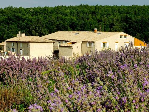 Farm Stay Aubignane La bergerie de Panturle : Guest accommodation near Banon