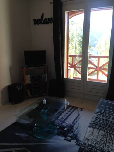 Studio Foux D'Allos Ski : Apartment near Allos