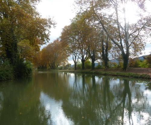 Maison jardin plaisir de l'accueil : Guest accommodation near Carcassonne