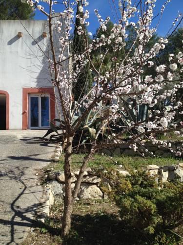 Villa Diego : Apartment near Castelnau-le-Lez