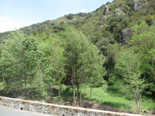 La chambre de la Colombe : Bed and Breakfast near Mas-Cabardès