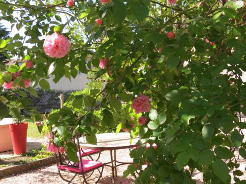 Le Jardin : Bed and Breakfast near Saint-Pierre-Avez