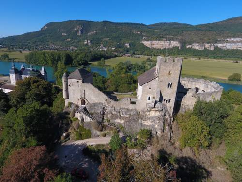 maison forte vertrieu : Guest accommodation near Annoisin-Chatelans