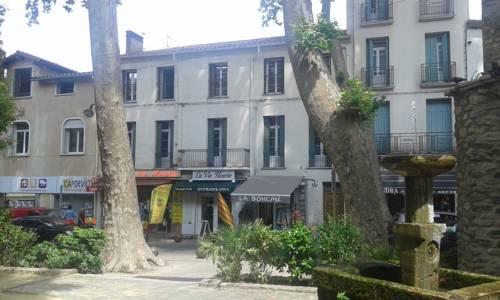 cal erre : Apartment near Céret