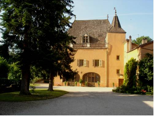 Chateau de la Venerie : Bed and Breakfast near Arnas