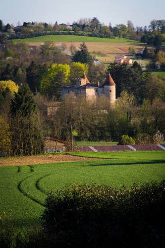 Château de Tanay B&B : Bed and Breakfast near Toussieux