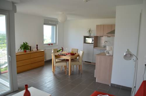 Aparthotel Le Trident : Guest accommodation near Mulhouse