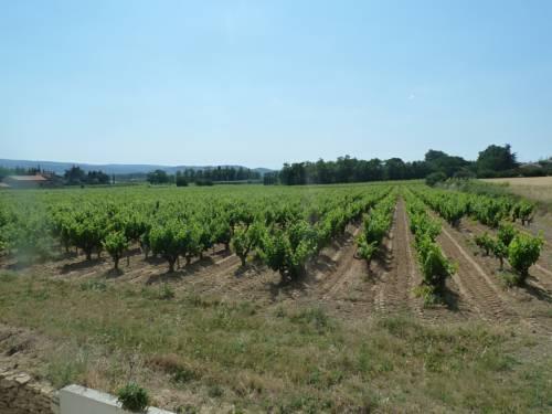 La Vigne : Guest accommodation near Saint-Just