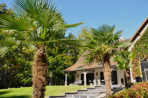 L'Albiziane : Bed and Breakfast near Nainville-les-Roches