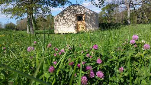 Frog Lake Yurts : Guest accommodation near Lalanne-Arqué