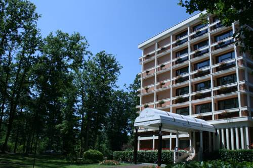 Le Grand Monarque : Hotel near Saint-Fargeau-Ponthierry