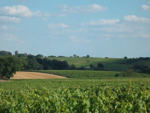 Chambres des Noels : Bed and Breakfast near Beaulieu-sur-Layon
