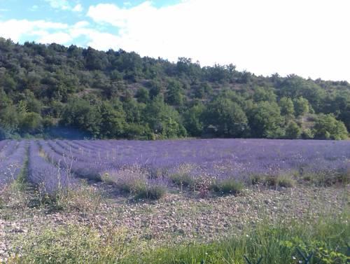 Le Clos : Guest accommodation near Savoillan