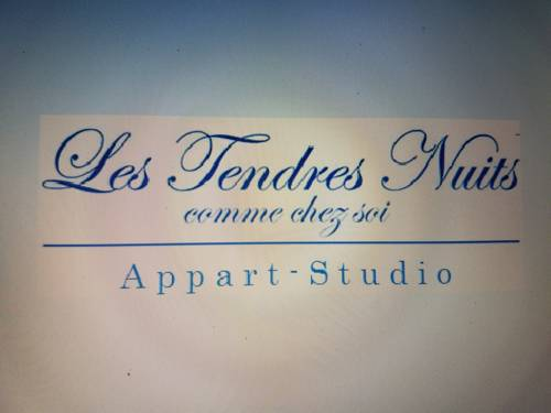 Studio Jennifer : Apartment near Aillant-sur-Milleron