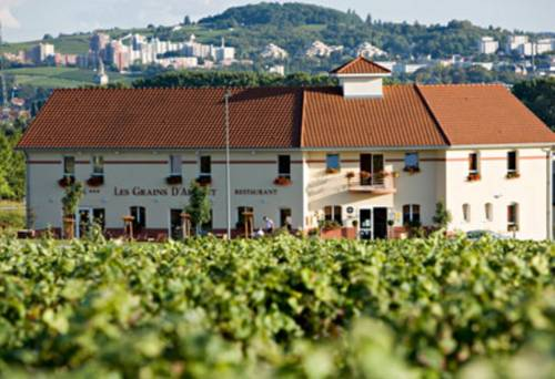 Les Grains d'Argent Dizy - Epernay : Hotel near Mardeuil