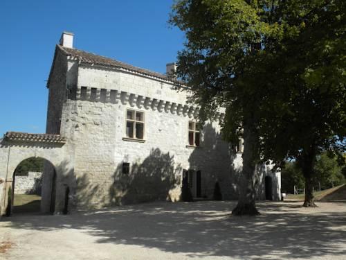 Château de Plèneselve : Guest accommodation near Pont-du-Casse