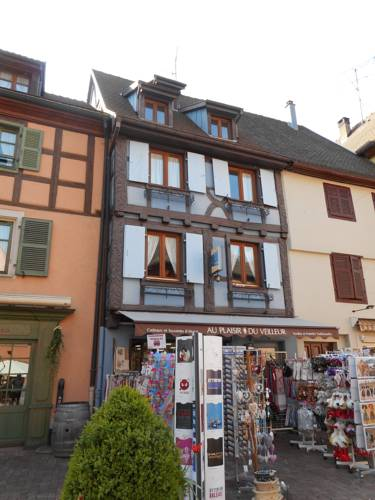 Le Gîte du Veilleur : Apartment near Wintzenheim