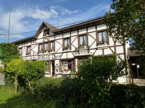 Auberge du Faisan Doré : Hotel near Sommauthe