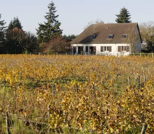 Chez Lucie en Touraine : Guest accommodation near Saint-Martin-le-Beau