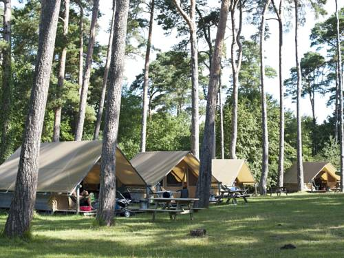 Huttopia Rambouillet : Guest accommodation near Longvilliers