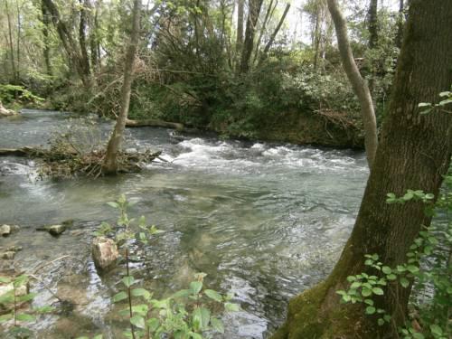 Gîte Valescure : Guest accommodation near Cassagnas