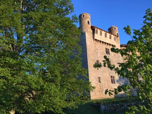 Château de Maisonseule : Bed and Breakfast near Saint-Apollinaire-de-Rias