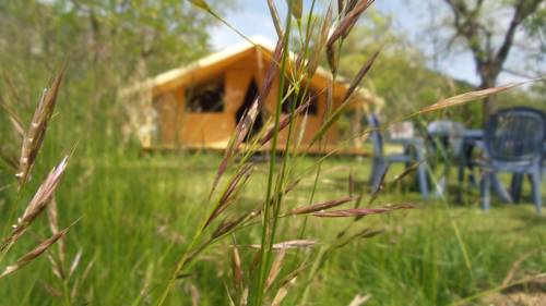 Camping des Barillons : Guest accommodation near Méreuil