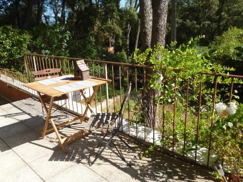 Petit Appartement Pont du Gard : Apartment near Vers-Pont-du-Gard