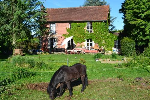 Louanne chambres d' hotes : Bed and Breakfast near Gaye