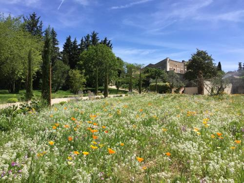 Domaine Les Martins - Gordes : Guest accommodation near Beaumettes