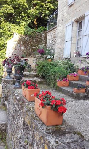 Appartement Maison de Remparts Caylus : Apartment near Saint-Georges